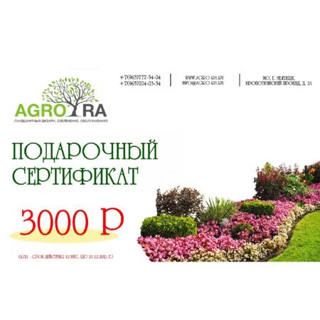 Сертификат 3000/21