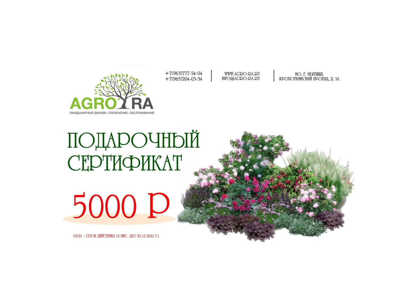 Сертификат 5000/21