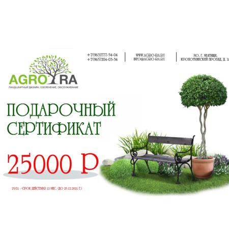 Сертификат 25000/21