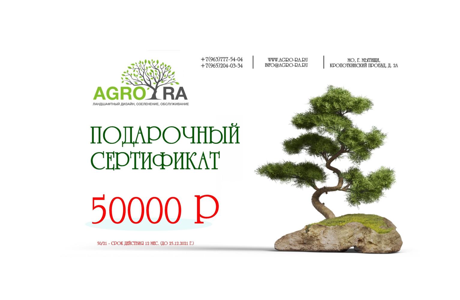 Сертификат 50000/21